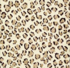 SC 4787 Cheetah